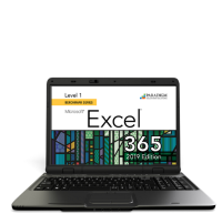 Cirrus for Benchmark Series - Microsoft Excel 365 - 2019 Edition - Level 1